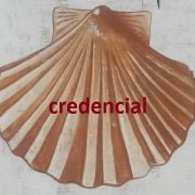 coquille credencial